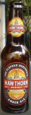 Hawthorn Amber Ale