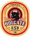 Holgate ESB